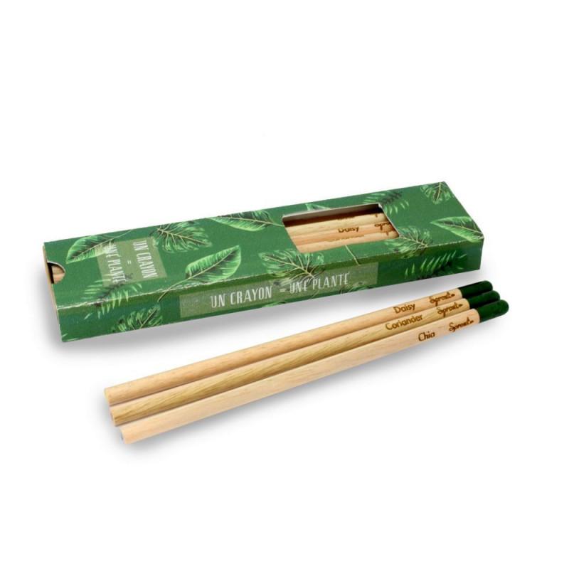 Coffret de 3 crayons à graines publicitaires, en bois de cèdre, contient une capsule biodégradable renfermant des graines.