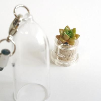 Babyplante Little Gem porte clé mini cactus