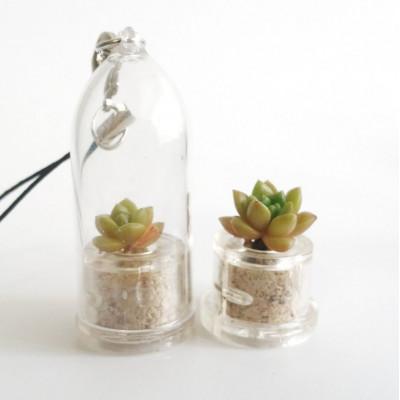 Babyplante Little Gem - Mini plante cactus porte clé Sedum australe Rose ou Orpin