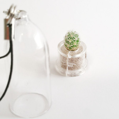Babyplante Snow Cactus Mammillaria gracilis porte clé mini plante capsule