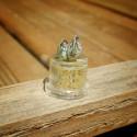 25 graines Allium Giganteum, ou ail géant d'ornement
