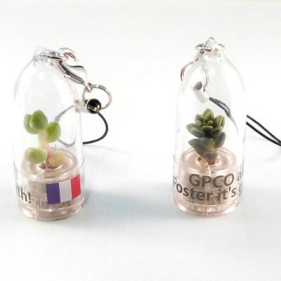 Personnalisation babyplante avec étiquette quadrichromie - cadeau goodies original écologique tendance vert