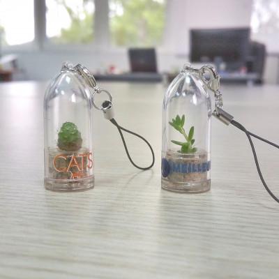 Personnalisation babyplante avec étiquette quadrichromie - cadeau entreprise goodies original écologique