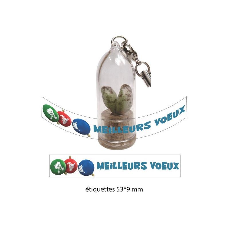 Personnalisation babyplante avec étiquette quadrichromie - cadeau goodies original écologique