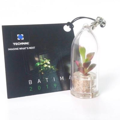 Babyplante personnalisée avec une cartonette carrée attachée au cordon du porte clé plante