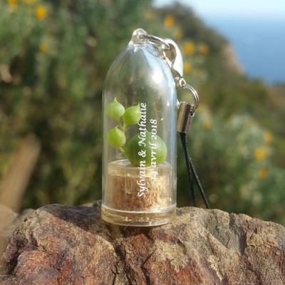 Babyplante personnalisée par tampographie 1 couleur objet publicitaire goodies écologique mini plante cactus porte clé