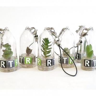 Babyplante personnalisée mini plante cactus goodies porte clé nature écologique cadeau congrès séminaire