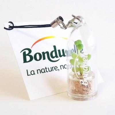 Goodies, porte clé, objet publicitaire écologique, cadeau nature, pack de 100 babyplantes mini plantes cactus personnalisées.