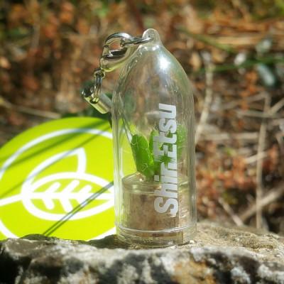 Objet publicitaire écologique, porte clé nature, goodies tendance, babyplante petite plante mini cactus personnalisation