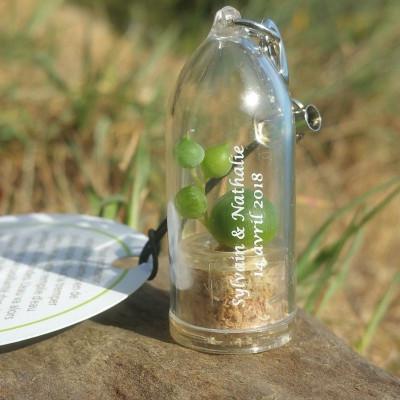 Porte clé personnalisé, goodies nature tendance, babyplante petite plante mini cactus personnalisation mariage wedding fête