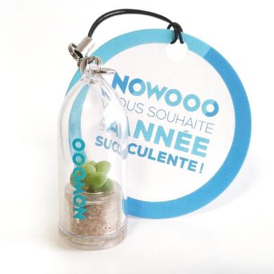 Cadeau nature, objet publicitaire, gadget écologique, porte clé, goodies tendance, babyplante petite plante mini cactus