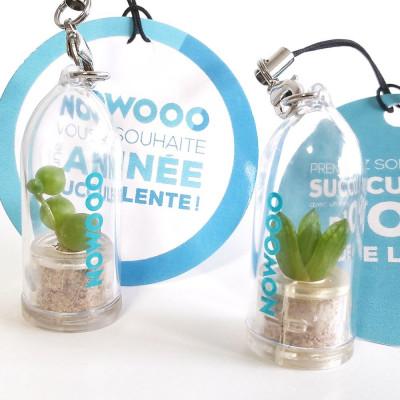 Cadeau entreprise objet publicitaire gadget écologique porte clé nature goodies tendance babyplante mini plante cactus