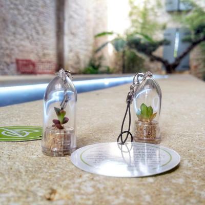 Babyplante personnalisée avec une cartonette ronde attachée au cordon du porte clé ecologique goodies nature