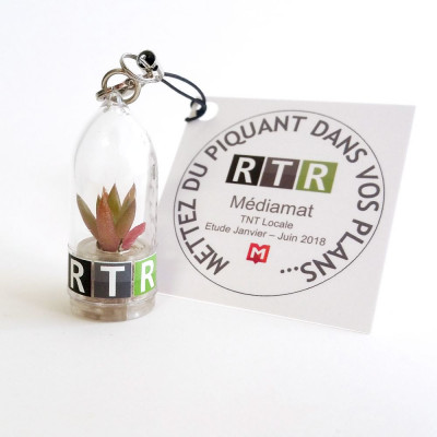 Mini plante cactus personnalisée cadeau client entreprise porte clé nature goodies écologique publicitaire
