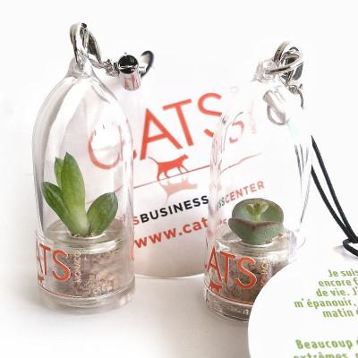 Babyplante personnalisation goodies original cadeau client entreprise porte clé publicitaire objet nature écologique