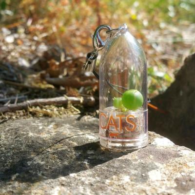 Babyplante personnalisée mini plante cactus goodies porte clé nature écologique cadeau entreprise original